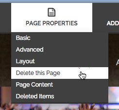 Deleting the page.