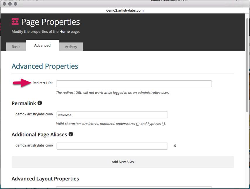"Type in the full website address in the ""Redirect URL"" field."