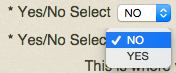 Yes/No Select